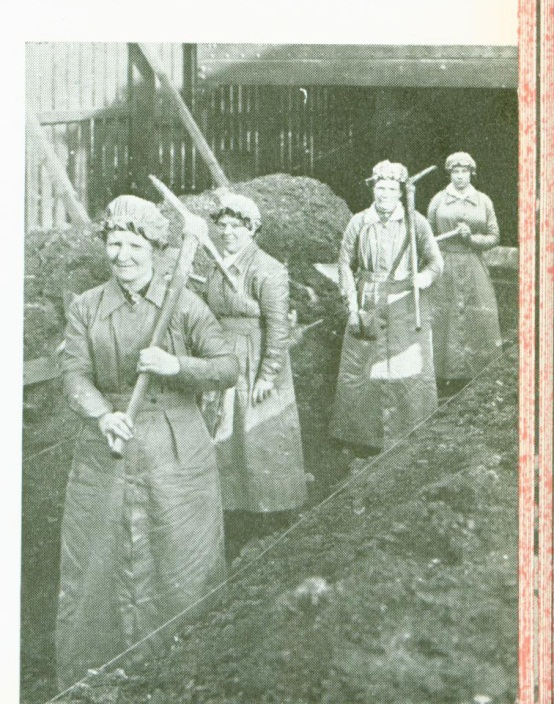 Female workers digging at BritishAluminium
