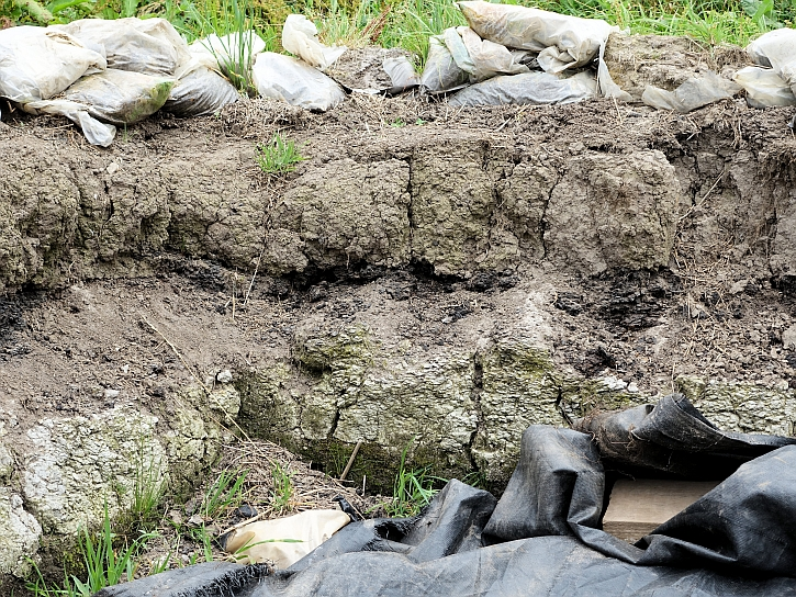 Conjuring Blog Peat deposits overlay the lighter sandy soils of the Mesolithic at Lunt Meadows lunt meadows layers